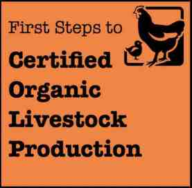 LivestockProdFirstStepsButton